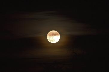 moon-1108007_1280