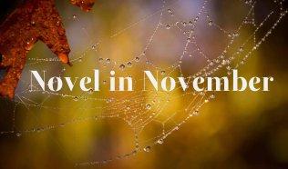 Novel in November