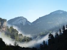 fog-1901036_1920