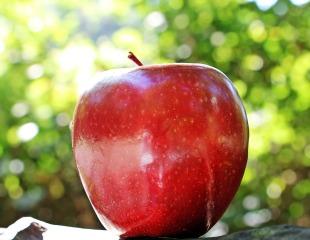 apple-1702316_1920